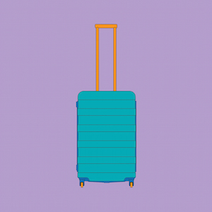Michael Craig Martin RA 4 wheel suitcase