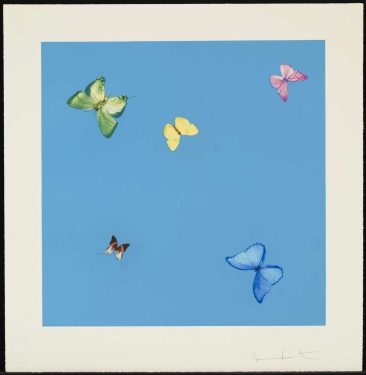 Damien Hirst, A Dream